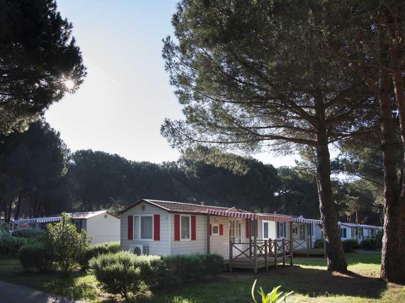 Camping Bi-Village