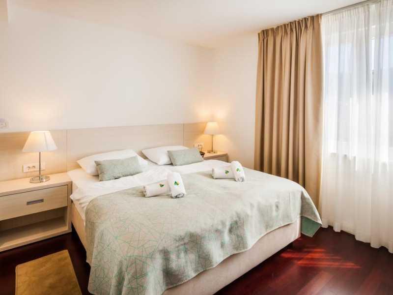 Hotel Borovnik ****