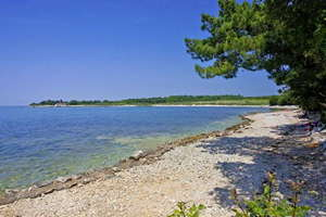 Camping Kastanija - Istrië - Kroatië - Novigrad