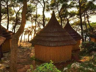 Pine Beach Resort ** - Kroatië - Noord-Dalmatië - Pakostane